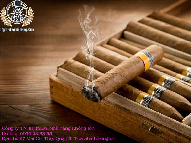 Hút xì gà có hại hay không
