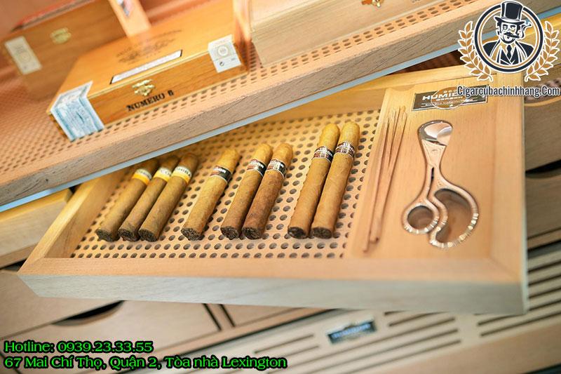 cách ủ xì gà