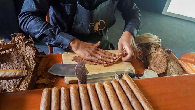 khám phá cấu trúc của xì gà